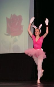 het roze konijn