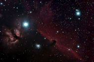 latest image: horsehead nebula by alan tough