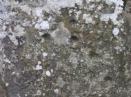 """the mysterious """"cup marked stones"""" at clava. the marks were possibly created by ritualistic actions"""