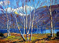 Birches by Loch Maree