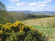 Alford and the Howe of Alford