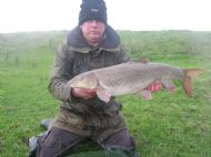 October dove barbel