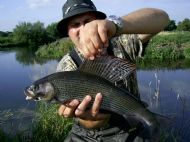 Andys first Grayling