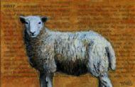 Book of Animals - Sheep