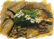Daisies on a Viking Ruin