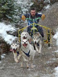 Husky Race