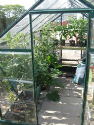Community Greenhouse