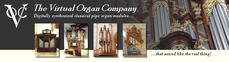 Virtual Organ Company
