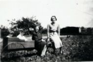 Novay Farm, Marton.