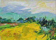 A Field in the Ariege