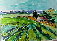 Vines, Languedoc