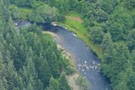 novar fishings, river alness, aerial photo beat 3