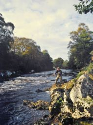 river alness salmon fishing, kildermorie beat