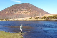 salmonquest salmon fishing lets, river conon, upper fairburn