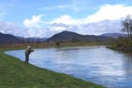 salmonquest salmon fishing holidays, river conon, lower fairburn