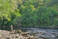 salmonquest salmon fishing holidays, river alness, loanridge beat