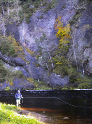 salmonquest salmon fishing holidays, river alness