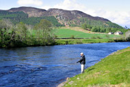 salmonquest salmon fishing holidays, river conon, coul fishings