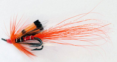 troutquest fly fishing tackle list for salmon fishing in the highlands - ally's shrimp