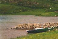 Loch Borralie