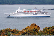 ms delphin off south queensferry