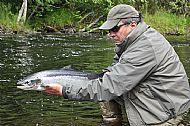 Summer Salmon