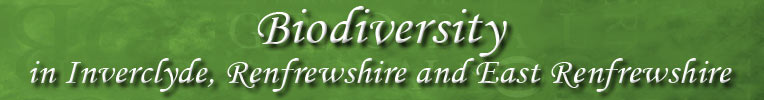 Biodiversity in Inverclyde, Renfrewshire and East Renfrewshire