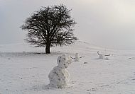 Honey Hill Snowmen