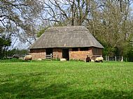 Thatched Barn, Thornby