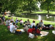 Picnic in Windsor