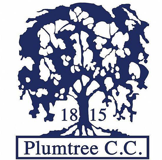 plumtree cricket club logo