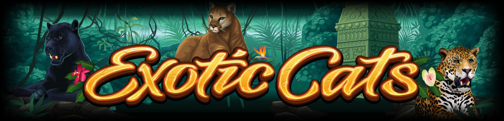 Slot of the Week - Exotic Cats