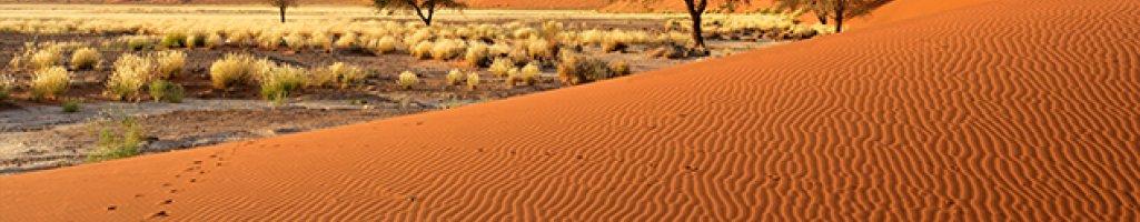 Uranium Mine Environmental Impact Assessment (Namibia)