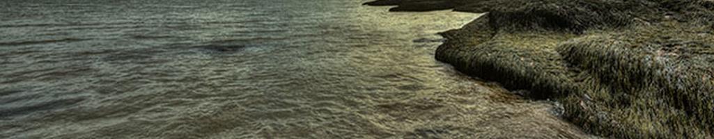 Marine Renewable Energy Technology Supplier Development (CAN)