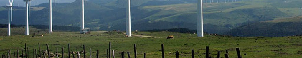 Windfarm Environmental & Technical Assessments (UK)
