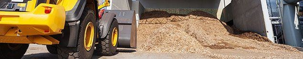 Technical Advice: Biomass Gasification Plant (UK)