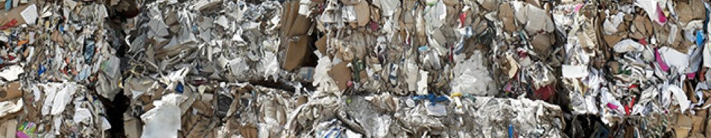 Waste Management Assessment (CAN)