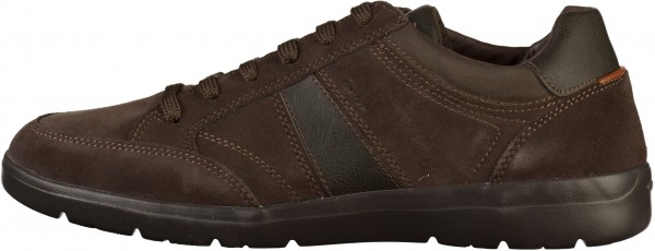 Geox Sneaker Leder/Textil Braun