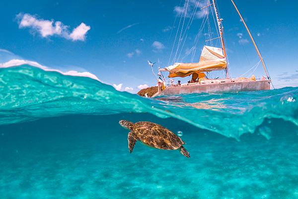 croisiere catamaran exotique