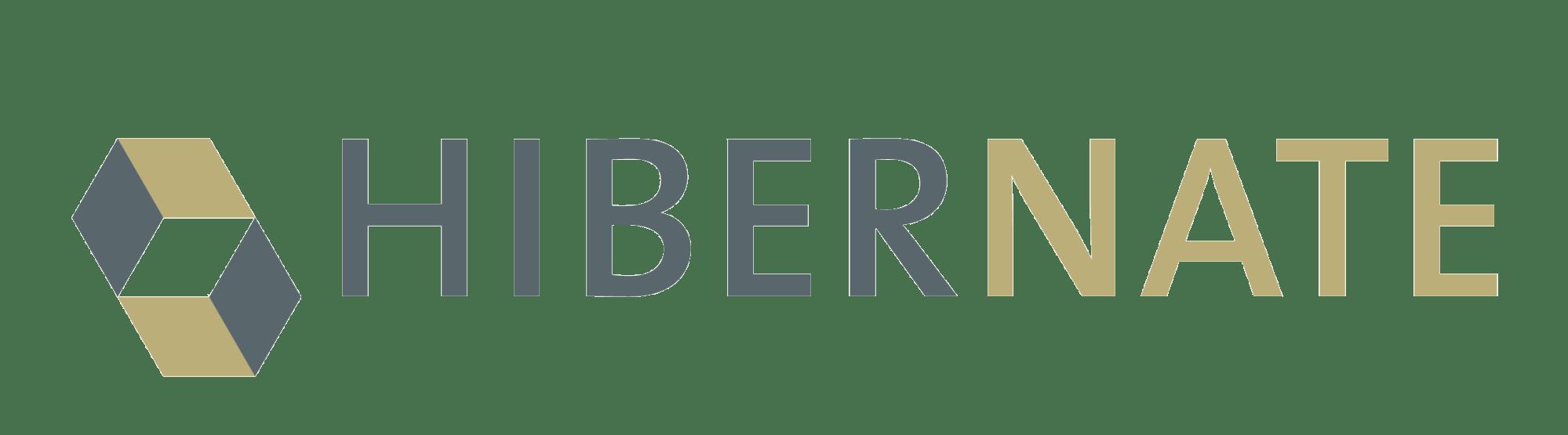 SALESmanago technologie - Hibernate ORM