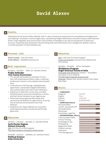 Public Defender Resume Example