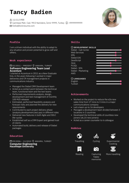 Accenture software engineering team lead resume sample