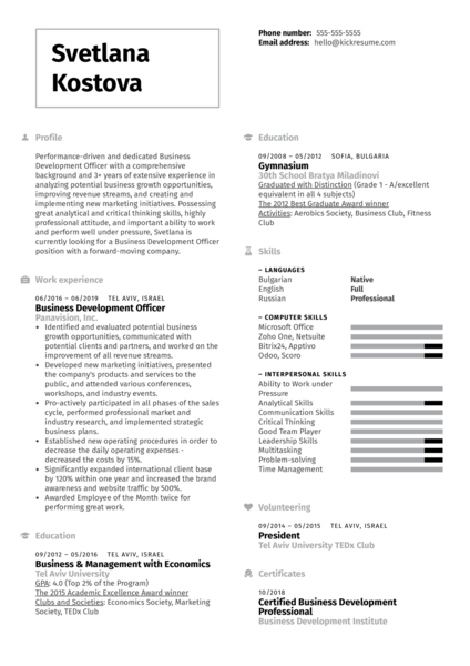 Business Development Officer Resume Example