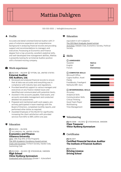 External Auditor Resume Example