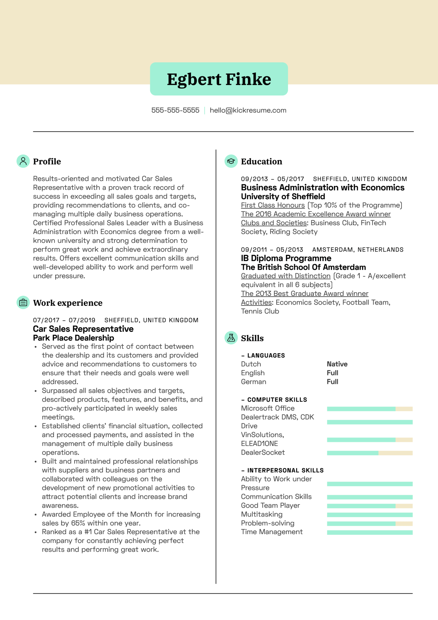 Car Sales Representative Resume Sample