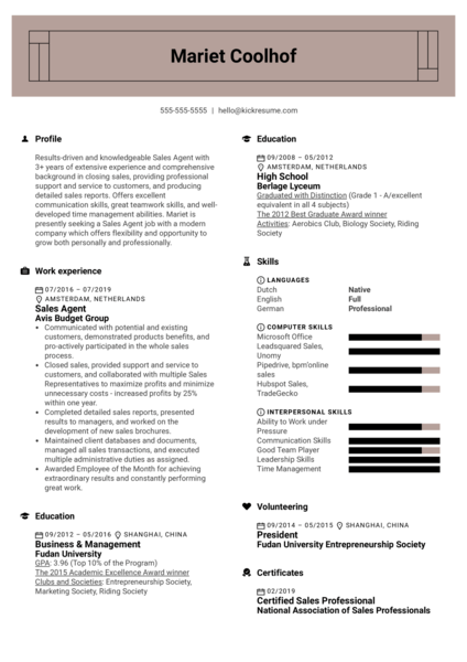 Sales Agent Resume Example