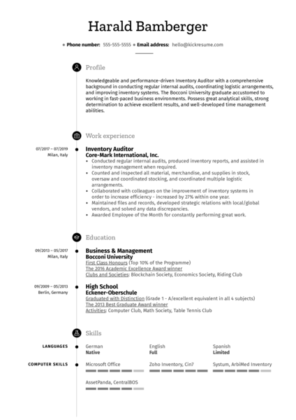 Inventory Auditor Resume Sample