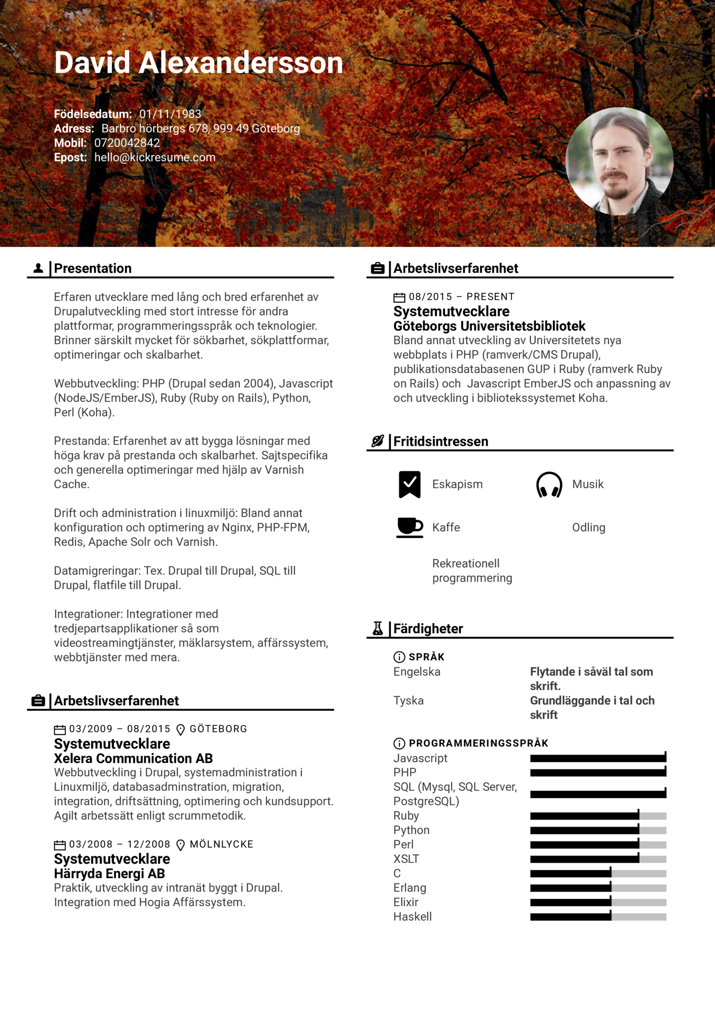 resume examples by real people  software developer  swedish  systemutvecklare