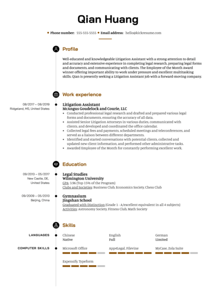 Litigation Assistant Resume Example
