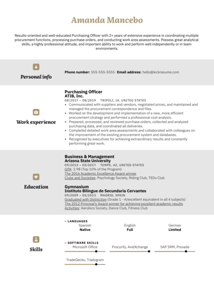Purchasing Officer Resume Example